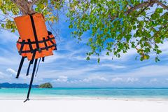 Life vest jacket hanging on the tree on the beautiful beach royalty free stock image