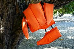 Life vest jacket hanging on the tree. Life jackets hanging on the tree on a tropical beach. Equipment for active water sports stock images