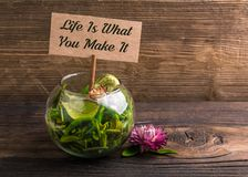 Life is what you make it royalty free stock photography