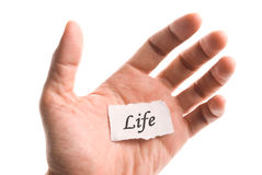 Life word in hand Royalty Free Stock Photography
