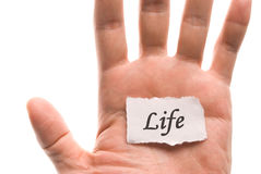 Life word in hand Stock Photography