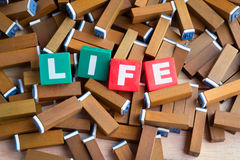 Life word inside the colorful text box on brown wood stamper Royalty Free Stock Photos