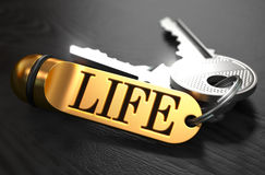 Life written on Golden Keyring Royalty Free Stock Image