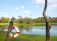Lifebelt w królowej Sirikit parku Obraz Stock