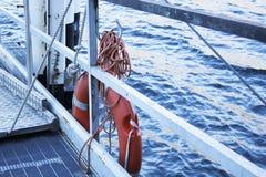 Lifebuoy на груше Стоковое Изображение