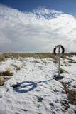 Lifebuoy на пляже зимы Стоковое Фото