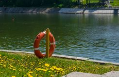 Lifebuoy on the background of a concrete path near the pond with green grass and yellow flowers. The lifebuoy on the background of a concrete path near the pond stock image