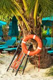 Lifebuoy on palm tree. At the beach royalty free stock photos