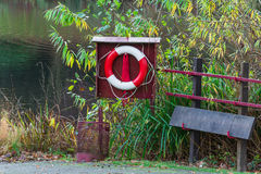 Lifebuoy and rescue board Stock Photography