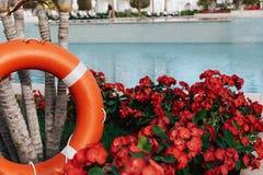 Lifebuoy standing next to the swimming pool stock photos