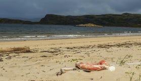 Lifebuoy sur la plage Images libres de droits