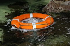 Lifebuoy in the water. Royalty Free Stock Photo