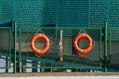 Lifebuoys пар Стоковые Фотографии RF