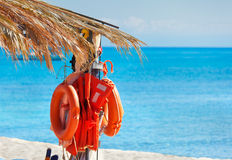 Lifebuoys. Life-buoys on the beach under palm leaves Stock Photography