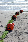 Lifeguard BUOYS floating equipment. Lifeguard water equipment on a sunny beach Royalty Free Stock Images
