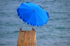 Lifeguard chair with umbrella. A lifeguard chair with beach umbrella royalty free stock photography