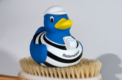 Lifeguard duck. Sitting on a brush Stock Images