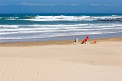 Lifeguard on empty beach Royalty Free Stock Photography