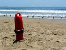 Lifeguard floater on shore with some seagulls. A red floater from a lifeguard stuck in the sand in front of the sea with some seagulls Stock Images