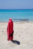 lifeguard lifesaver Στοκ εικόνες με δικαίωμα ελεύθερης χρήσης