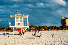Lifeguard tower at the Clearwater Beach. Florida. Stock Photo
