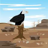 Lifeless desert and eagle on tree Royalty Free Stock Images
