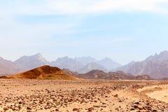 Lifeless Hot Desert Royalty Free Stock Photo