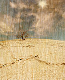 Lifeless tree in the salt desert in retro style Royalty Free Stock Image