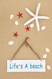 Lifes海滩 库存照片
