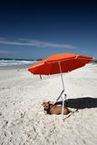 Lifes a Beach. Dog sitting under umbrella at the beach Stock Photography
