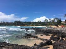 Lifes een strand Stock Afbeelding