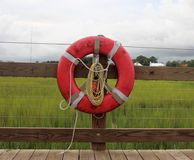 Lifesaver on dock. In front of green marsh Stock Photography
