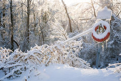 Lifesaver in winter snow Royalty Free Stock Photo