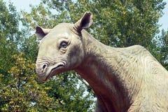 Lifesize odbudowa gigantyczna bezroga nosorożec (Indricotherium) Fotografia Stock