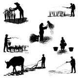 Lifestyle of agriculturist Stock Image