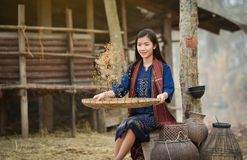 Lifestyle Asia Girls farmer agriculturist with happy smile. Beautiful Girls Asia Clothing Dress farmer Lifestyle of rural Asian woman in the field countryside Stock Images