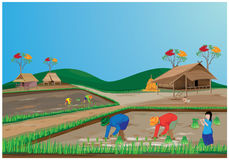 Lifestyle of farmer Stock Photo
