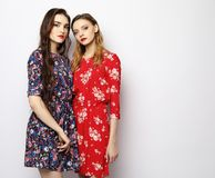 Lifestyle, fashion and people concept - two stylish sexy girls best friends. Over white background royalty free stock photos