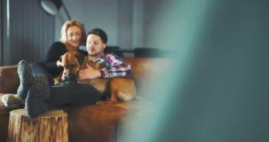 lifestyle Homme et femme jouant avec le chien dans le temps gratuit banque de vidéos