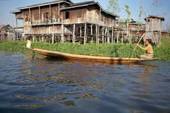 Lifestyle on the Inle Lake Royalty Free Stock Image