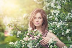 Lifestyle portrait of beautiful girl in spring blossom garden. Beauty woman on apple flowers and green leaves background.  stock image