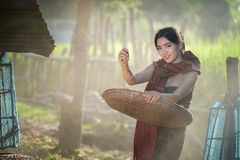 Lifestyle of rural Asian women in the field countryside thailand Royalty Free Stock Image