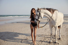 Lifestyle witth horse on the beach Royalty Free Stock Photos