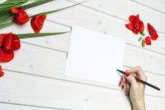 Lifestyle, Work, Paper, Pencil, Red Royalty Free Stock Images
