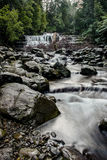 Liffey cade nella regione delle parti centrali, Tasmania Fotografie Stock
