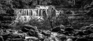 Liffey cade nella regione delle parti centrali, Tasmania Immagini Stock