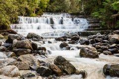 Liffey faller övrekaskaden, Tasmanien, Australien royaltyfri bild