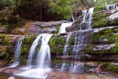 Liffey Falls Royalty Free Stock Image