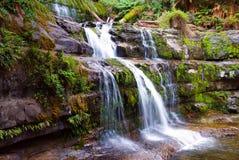Liffey Falls Stock Images