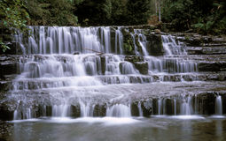 Liffey Falls Stock Photo